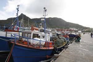 Hout Bay harbour and Mariners Wharf. Fishing vessels arrive back in harbour and unload their catch of Hake which is in turn loaded by fresh seafood wholesalers after being checked by a Marine Resources Official on the dock. © John Hogg / World Bank