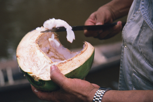 Another of the freely found foodstuffs, coconut, provides nourishment without cost to the inhabitants of the Amazon region of Brazil, near Manaus. Coco is also sold in the different markets, thus providing an income as well. Brazil. © Julio Pantoja / Worl